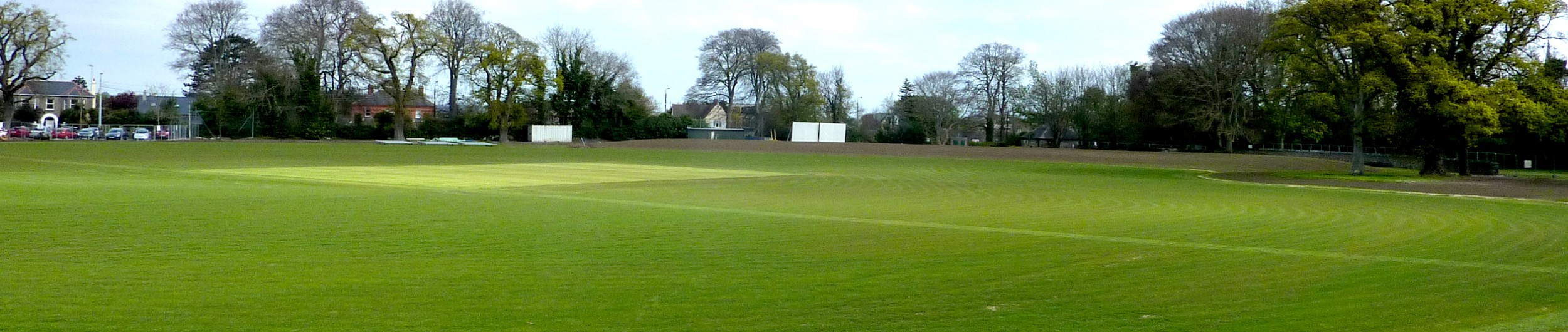 A Cricket Pitch