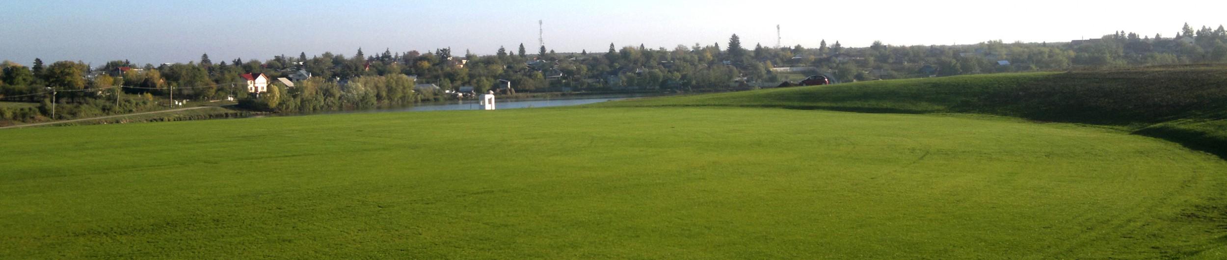 An Open Grassy Field